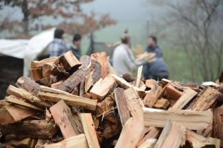 Aus Baum mach Brennholz: Nach der Arbeit an der Motorsäge folgt das Spalten.